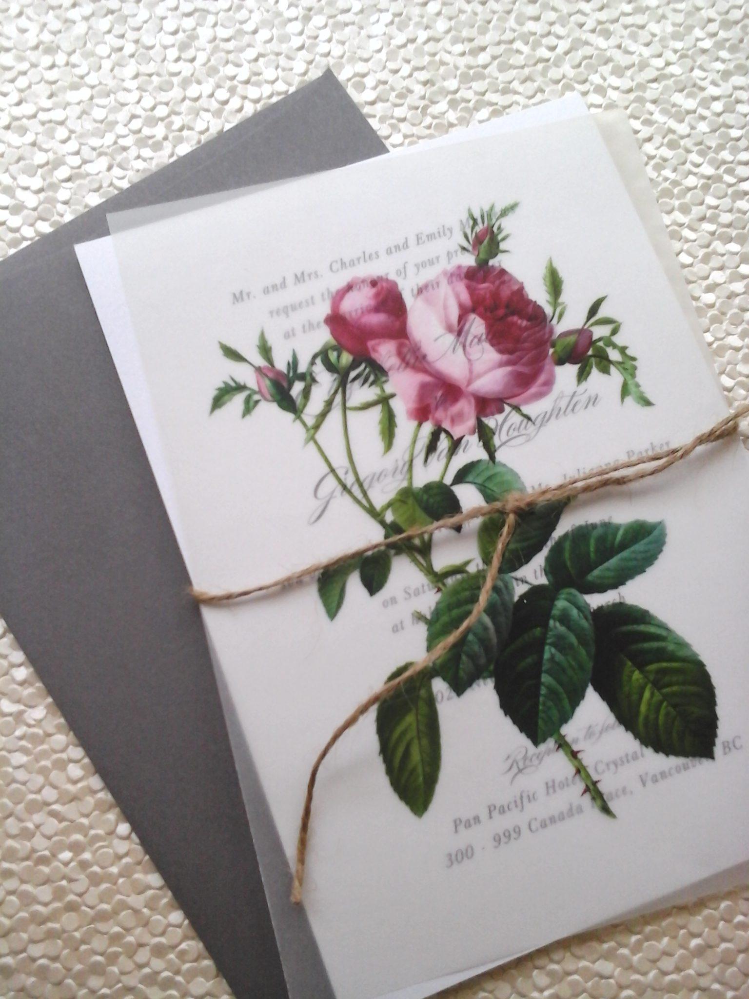 Redoute Rose – Botanical on Vellum overlay